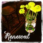 Spring Renewal Image