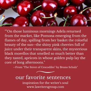 Our Favorite Sentences - Bruno Shulz