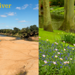 Writing the River - Why it's important to keep on writing